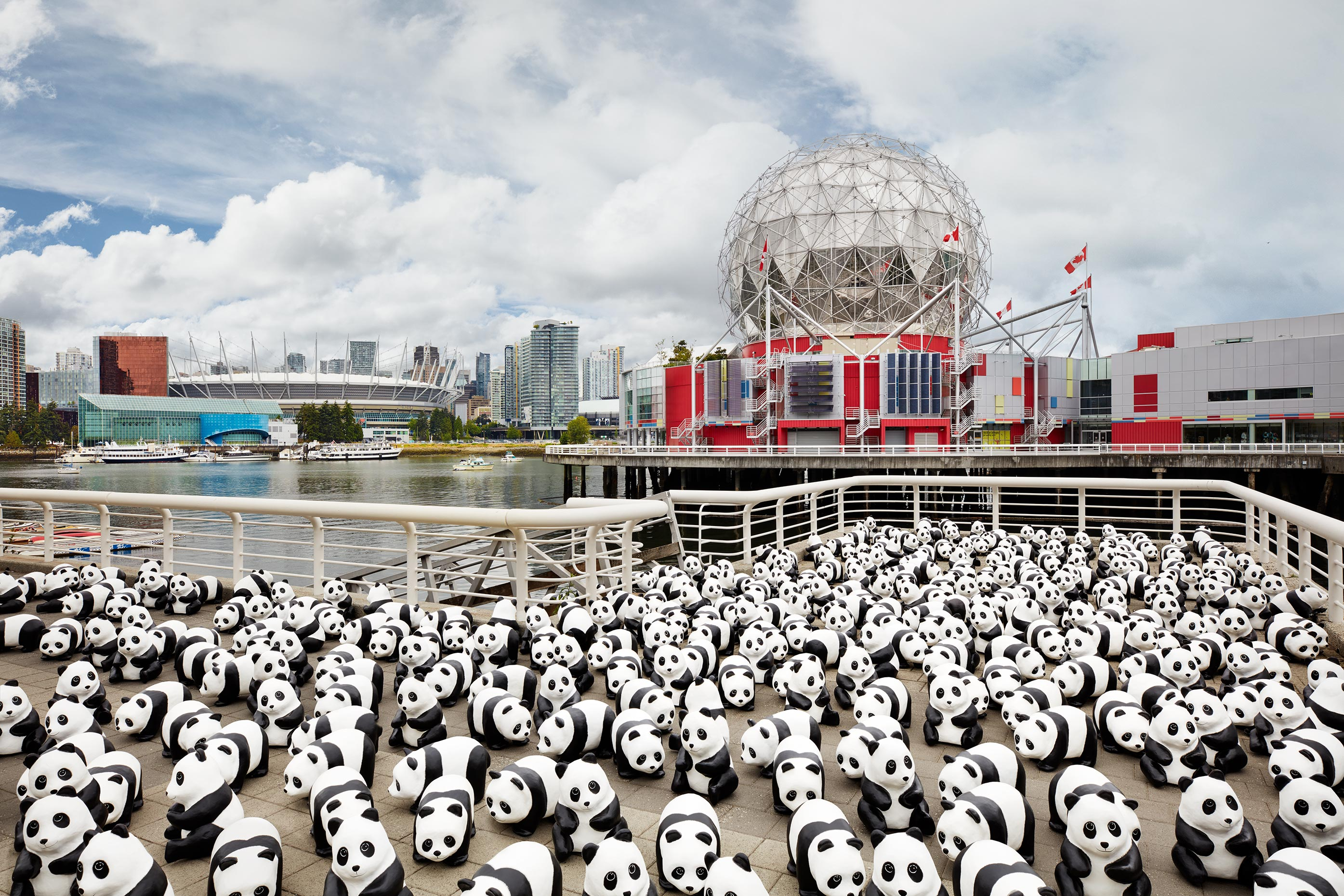 1600+ Pandas - Science World